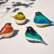 Spanyol üveg madarak
